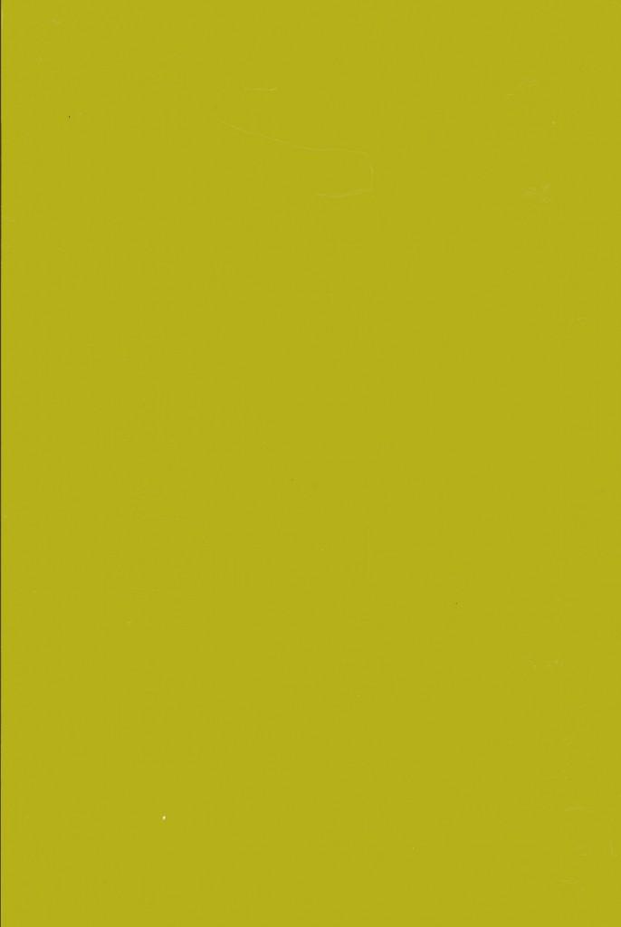 Muster Lackoberfläche Sikkens grün G4.50.50